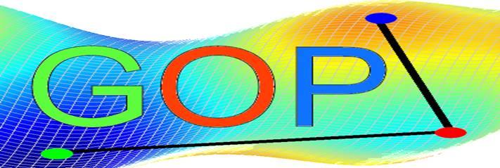 Global Optimization Platform